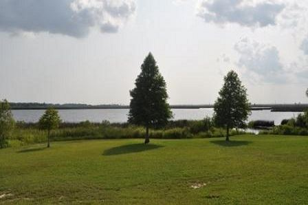 A green lawn with trees and a body of water in the background.
